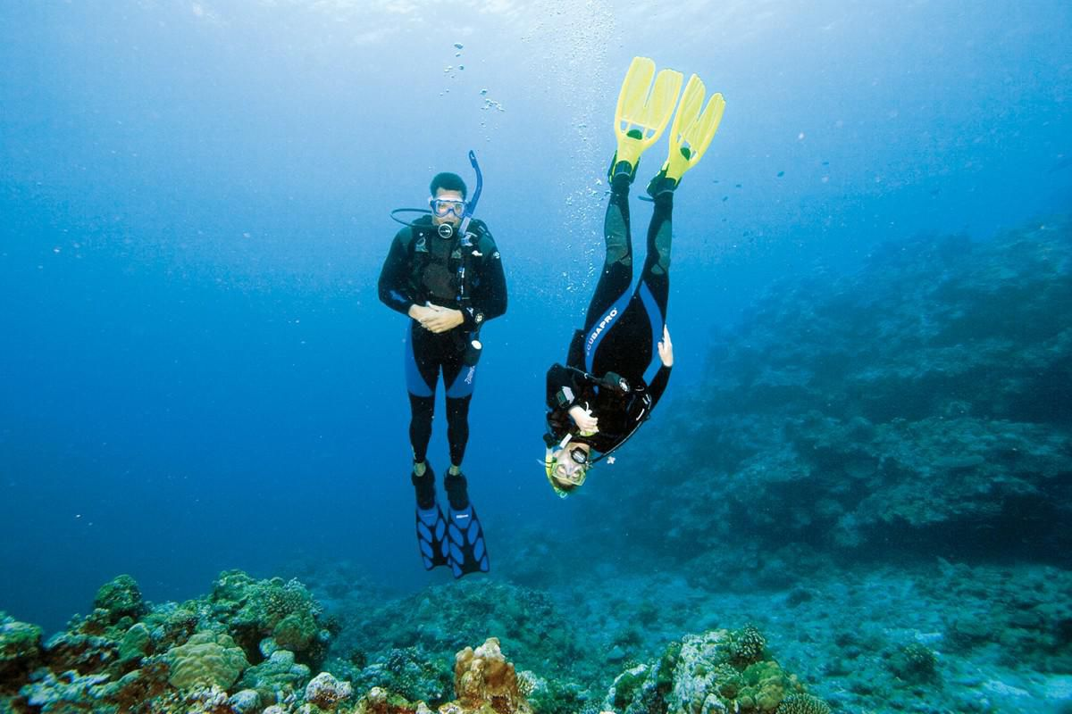 Search and recovery padi