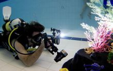 <h3>Underwater Photography Training</h3>