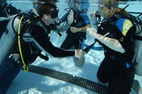 Podstawowe szkolenie nurkowe Open Water Diver