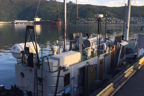 Nurkowanie wrakowe Narvik