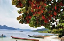 Galeria zdjęć z wyprawy Papua Zachodnia
