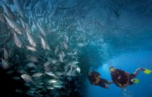 Wyprawa Bali - Komodo
