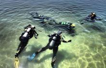 <h1>Pojedyncza lekcja nurkowania z instruktorem nad jeziorem</h1>