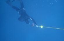 Upgrade Freediving Level 1